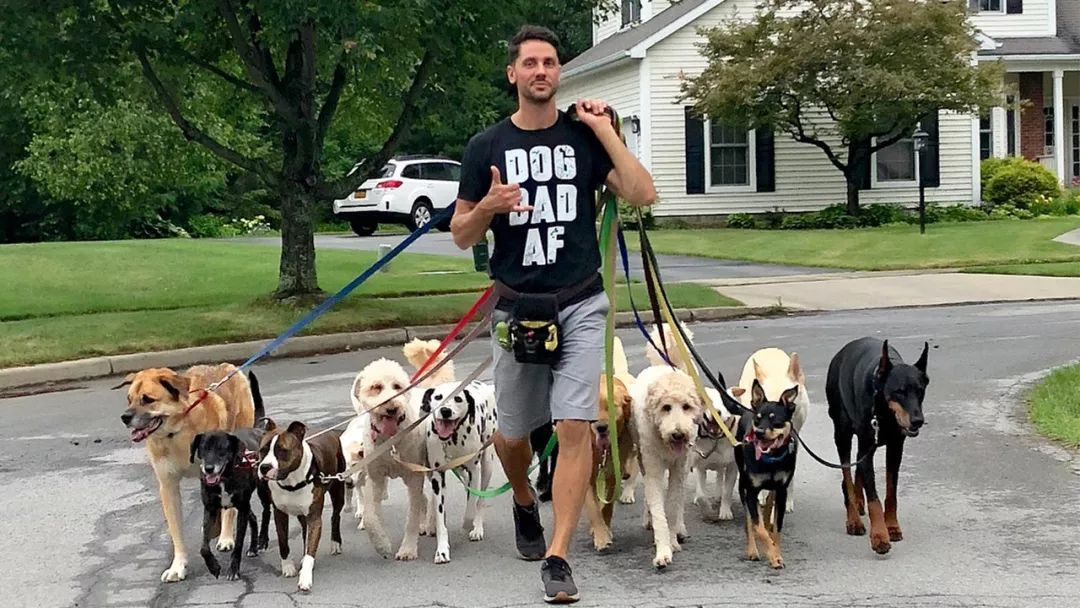 美国最帅遛狗师,8年里遛了超过5万只宠物狗,收入高到令人羡慕!