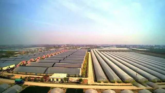 阎良gdp_2017年西安各区县GDP总量排行榜 高新区突破1200亿排名第二 附榜单