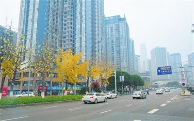 华新街街道城市管理再加力 家园更美更宜居