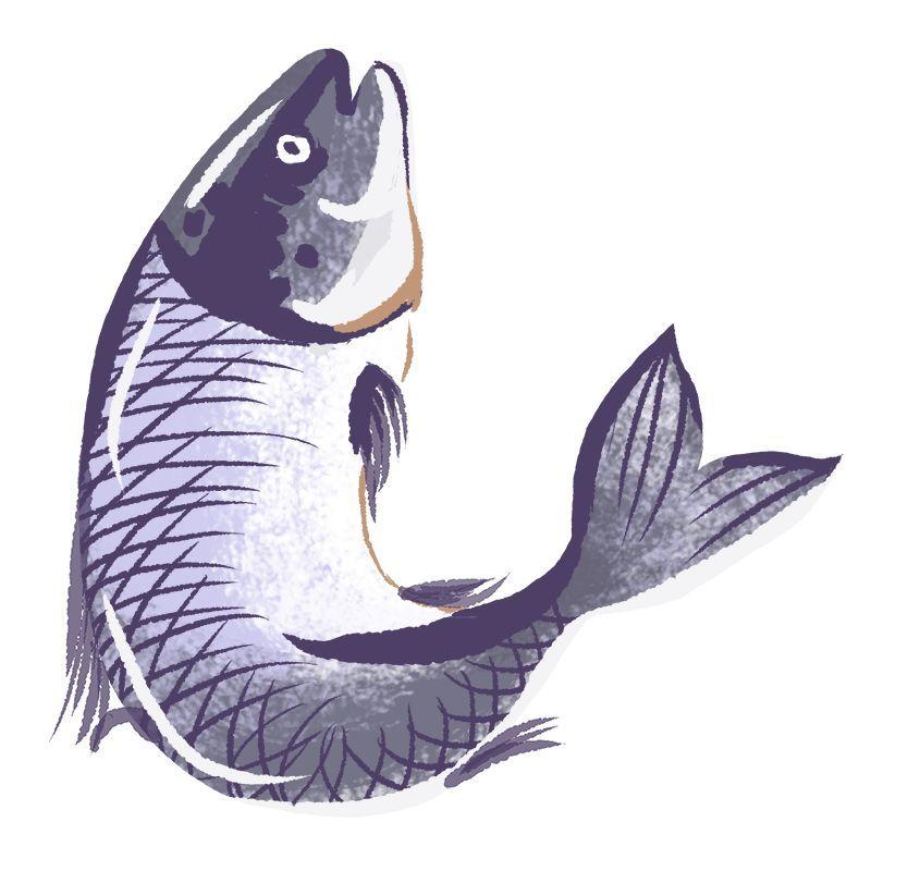 明日起,近江水产批发市场搬迁!以后买海鲜得去……(图7)
