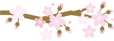 樱花季,我们不赏樱花,赏点别的