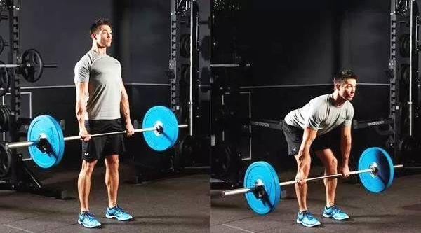 肌肉,动作,杠铃 1p1p.work