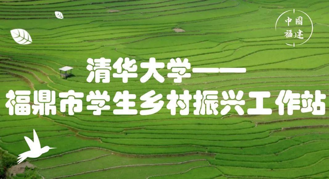 清华大学学生乡村振兴工作站落户