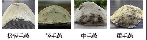 燕窝挑毛工艺干挑和湿挑的区别,值得收藏
