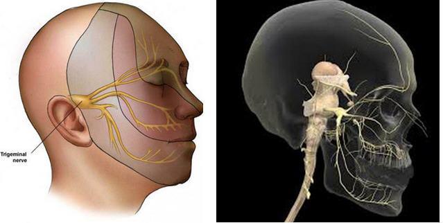 【疾病科普】临床中如何正确认识面肌痉挛的类型?