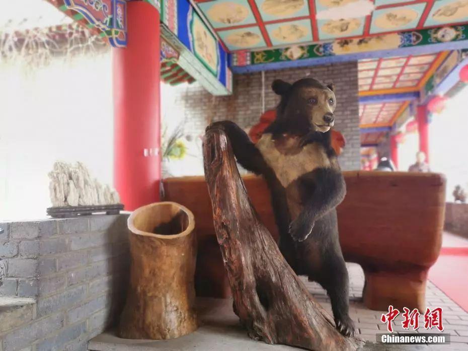 """能吃到熊掌老虎肉……牡丹江""""曹园""""终于拆了!"""