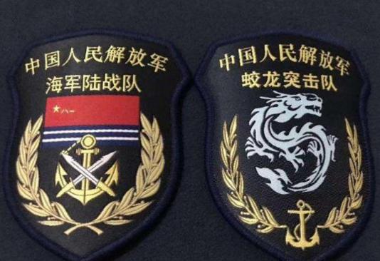 中国五大特种部队臂章,作为资深军迷,你一定不能陌生图片