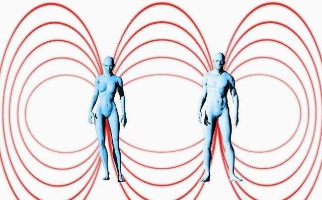 人类对磁场的感应可以称为第6感