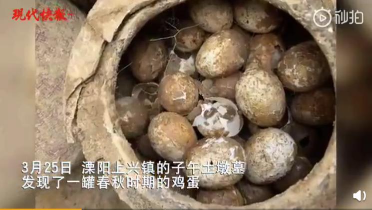 春秋时期的鸡蛋出土,它是如何保存2500年的?