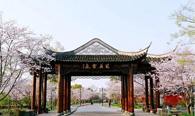 上海踏青赏花好地方图片