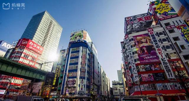 2020东京马拉松直通名额 锁定 东京梦 ,挑战亚洲唯一大满贯