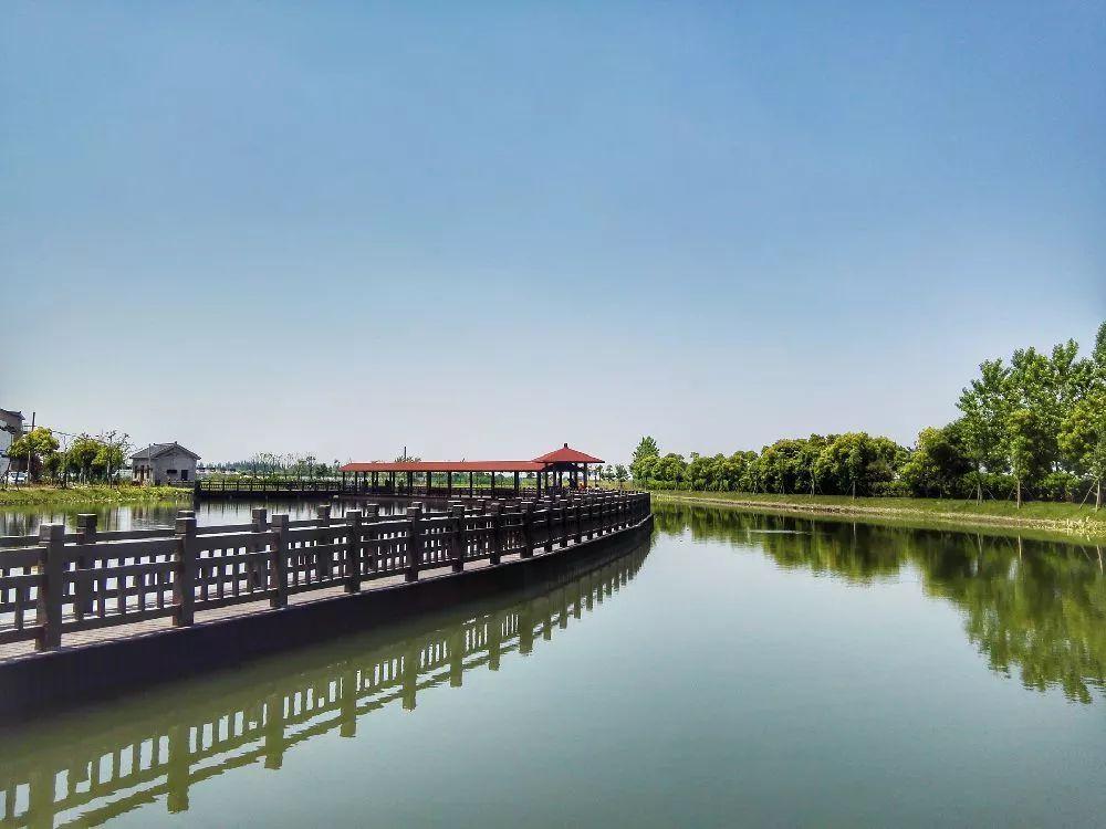 上海及周边春天踏青好去处图片