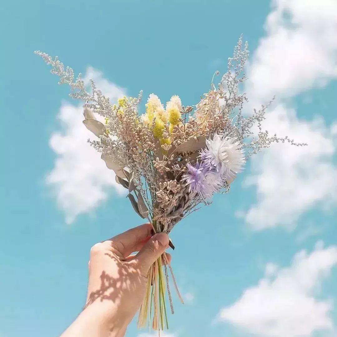 唯美风景花朵头像图片