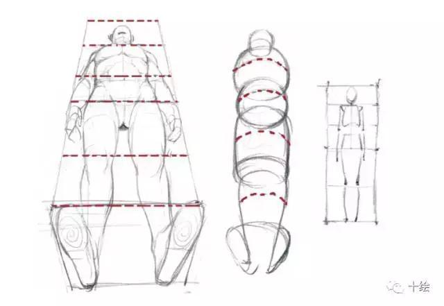 人体透视画不好怎么办?这个透视教程很有用!