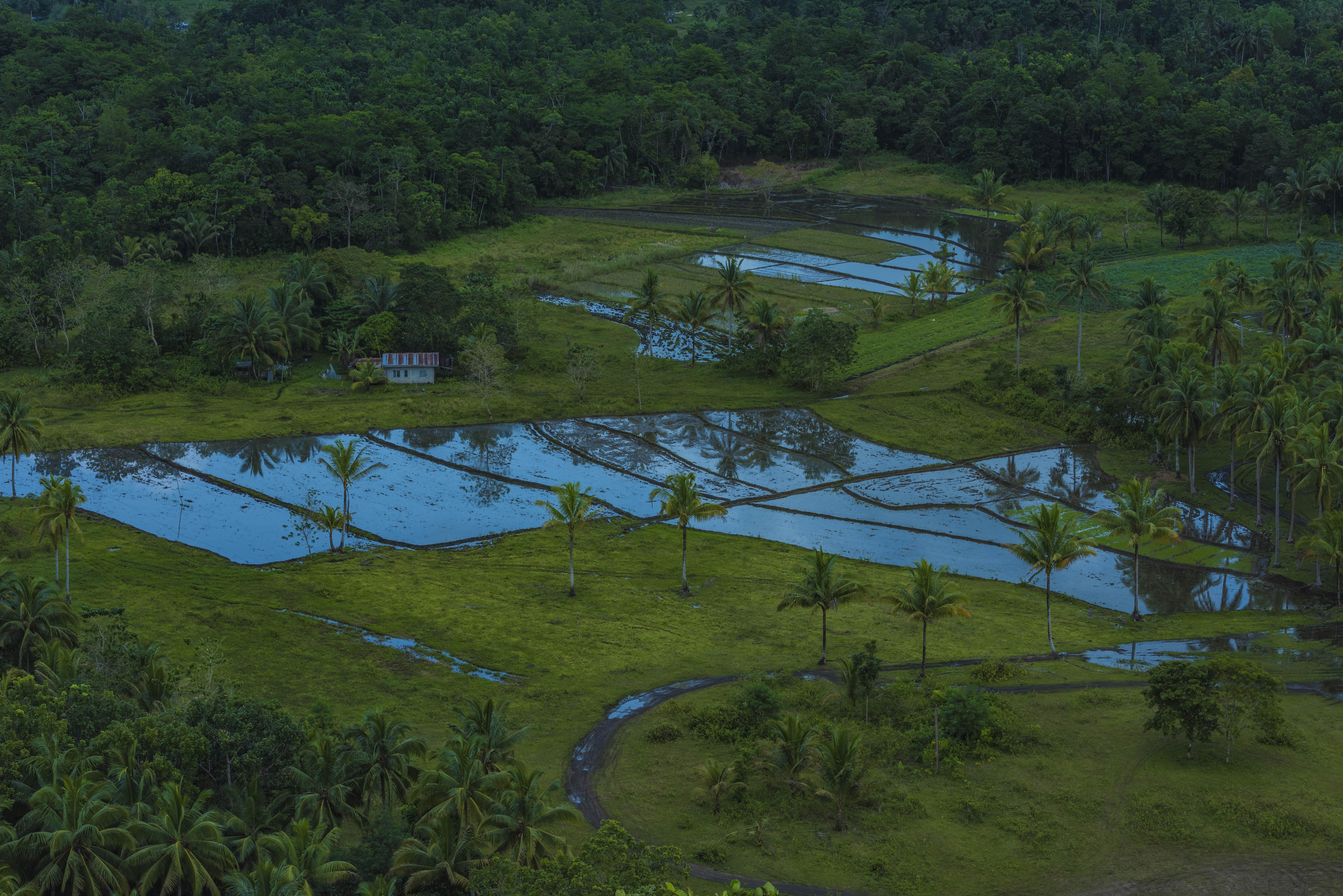 特大馒头_探寻《哈利波特》拍摄取景地,菲律宾巧克力山到底有什么?_巨人