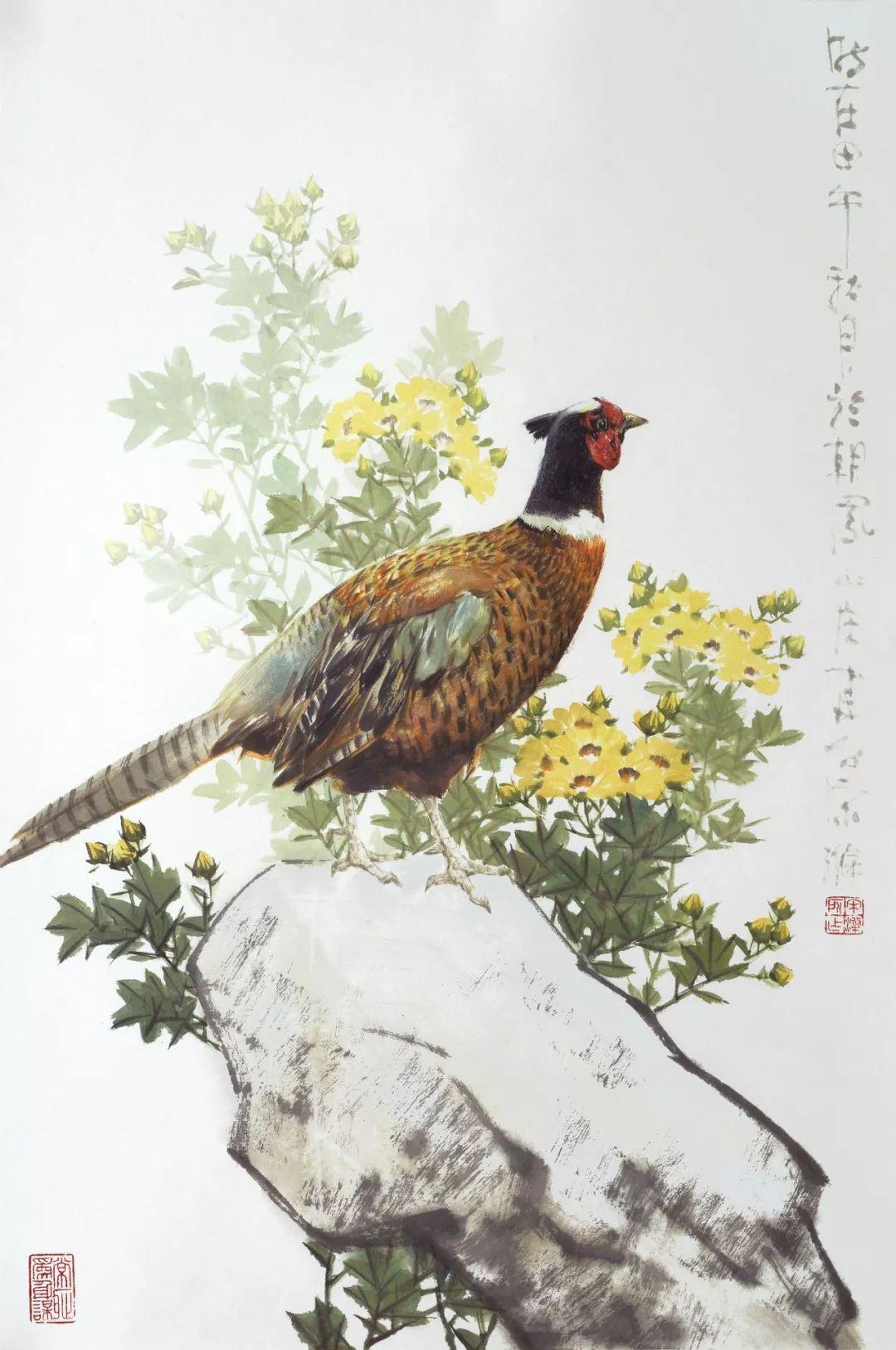 成都千公里归巢63羽 冠军鸽照片(图)-信鸽资讯-中国信鸽信息网