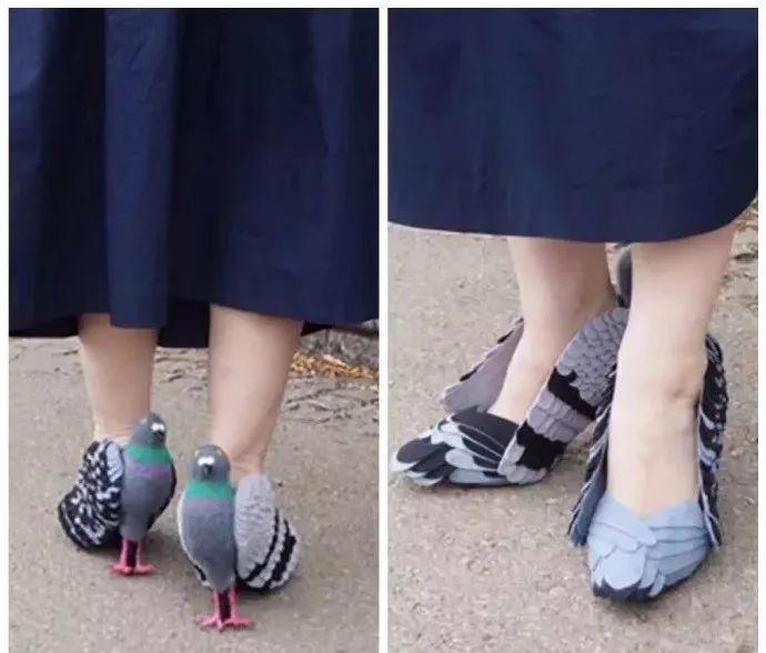 鸽子鞋,走着走着就飞了