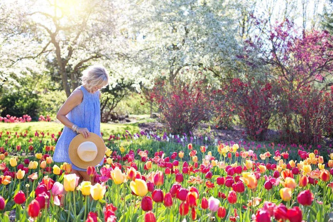 这10种天然食物是增强免疫力的高手,春天常吃不容易生病!