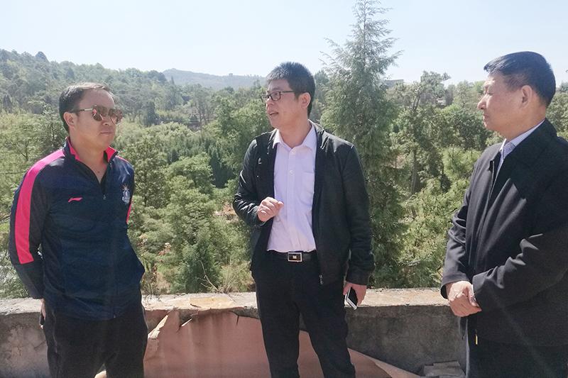 中国万通王云达考察云南省晋城镇文化产业园项目