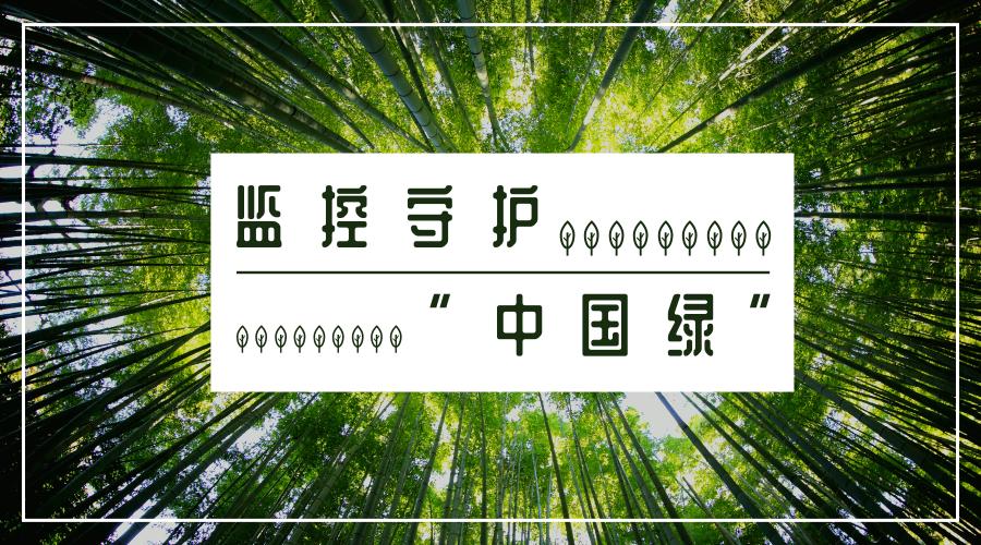 """蚂蚁森林拟上线新功能?监控守护""""中国绿"""""""
