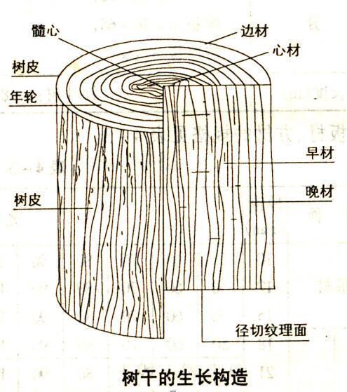 室内装饰材料/木料