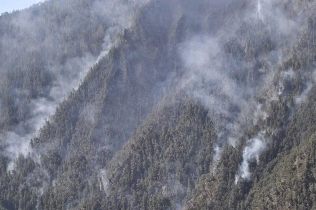 四川凉山火灾 这72小时到底发生了什么