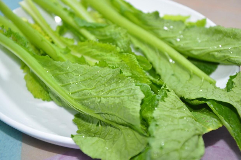 四川为菱角菜,羊角儿菜;江苏为雪里红,雪菜;广东则为皱叶芥菜,大叶图片