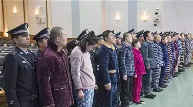 """全国首例非法中介涉黑案件宣判:横行武汉的""""黑中介""""何以猖獗?"""