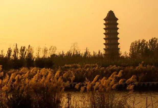 建一中南新校区、高铁设站、开发中洲古城……聊城这里将有大发展