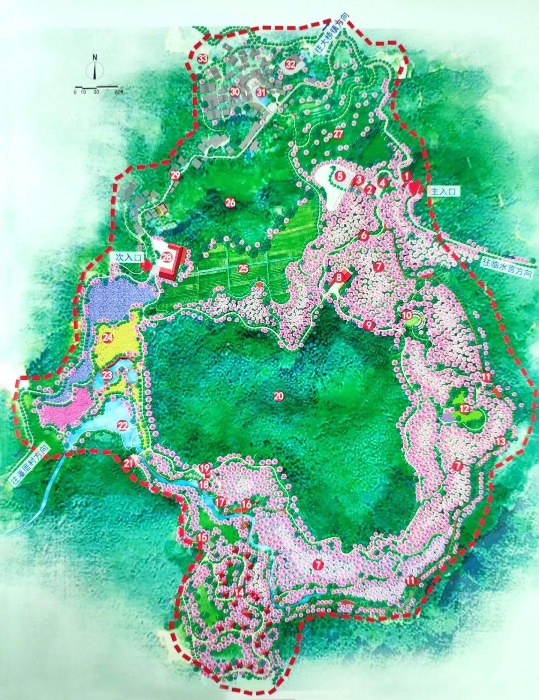 大辰樱花谷景区规划图