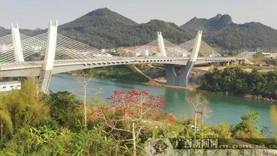 柳州 桂林 崇左 花漾 广西,你爱哪款
