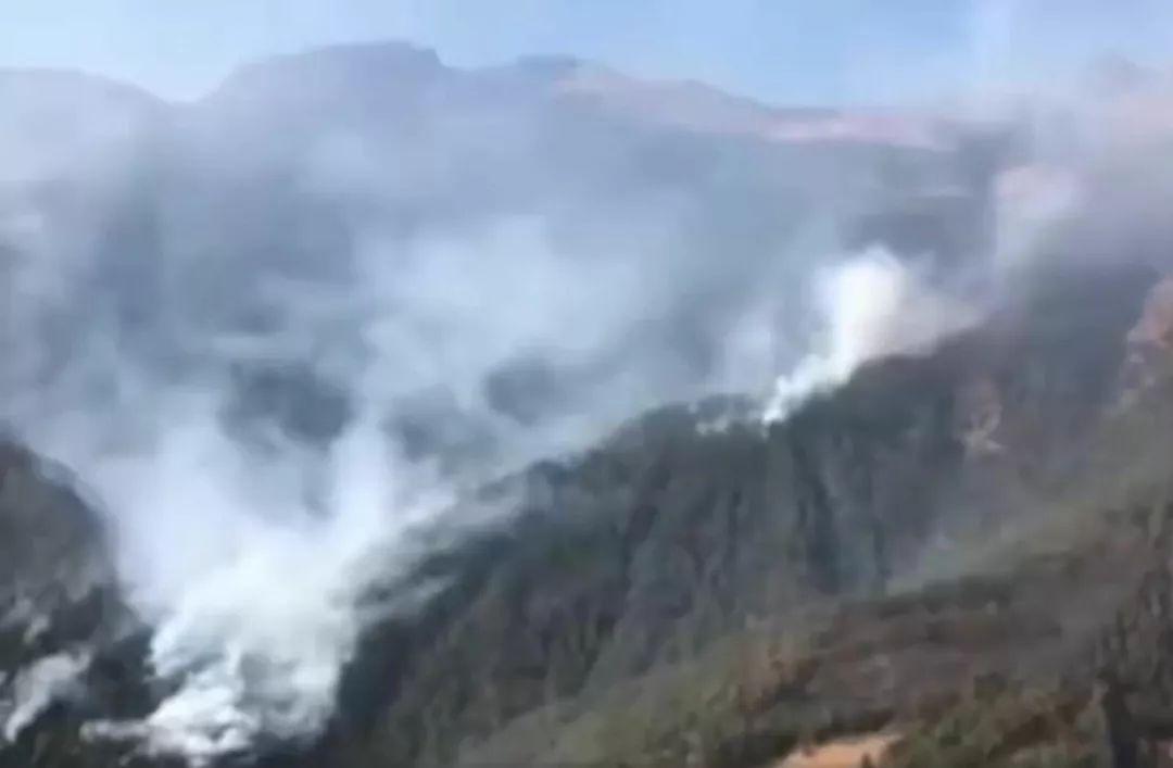 痛心 四川凉山森林火灾 三十救火勇士牺牲