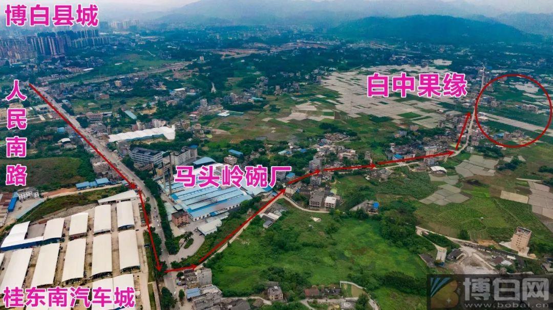 广西博白县有多少人口_广西区内人口大县,超百万的有8个,最多的一个近200万(2)