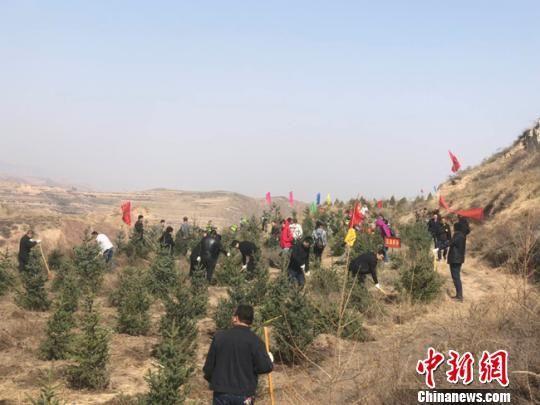 兰州千余人义务植树5000余株 荒山遍绿洼地成林
