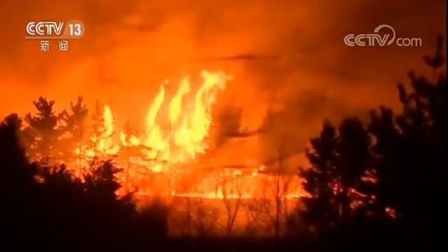 """五地区进入""""国家灾难""""状态 韩国东海岸发生山林大火"""