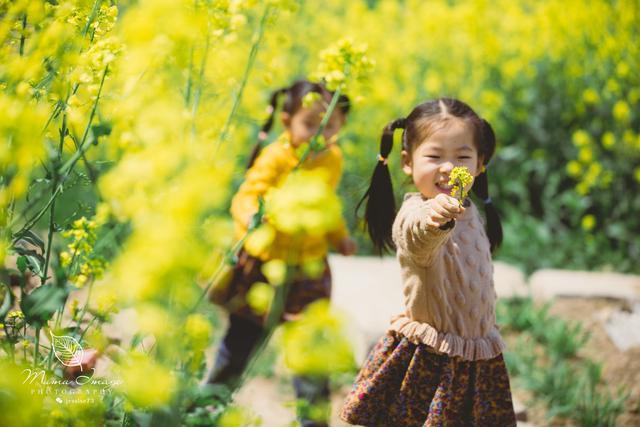扬州,你是这样一个春天