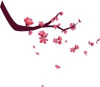 你所不知道的寒食节,诗意中国张宏为您解密背后的故事