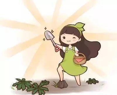 路边的野菜你不要随便吃!