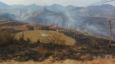 四川木里火灾令人悲痛 春季森林火灾频发,到底该如何预防