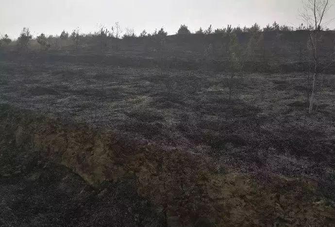 榆林一男子烧纸引发大火,被拘留... 榆阳、定边、神木发生多起火灾!
