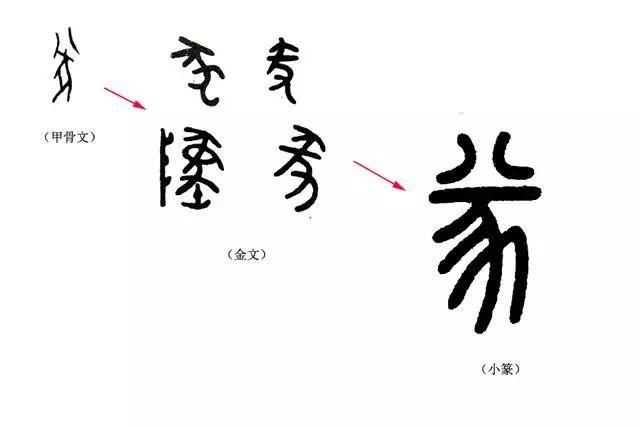 说文解字 第119课 猪为何是 六畜 之一,看这个汉字
