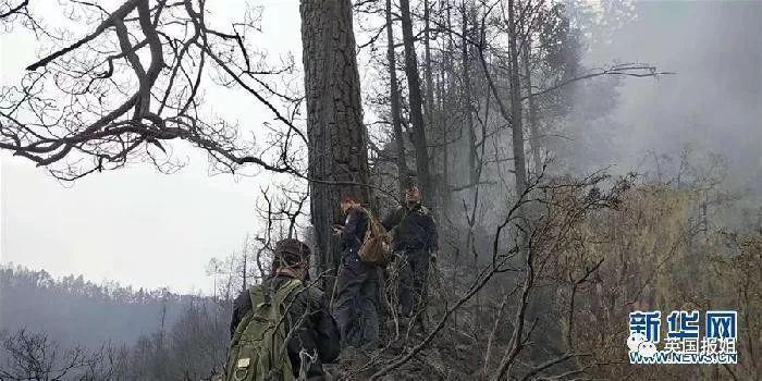 因这场大火而受难的消防员,远不止30人