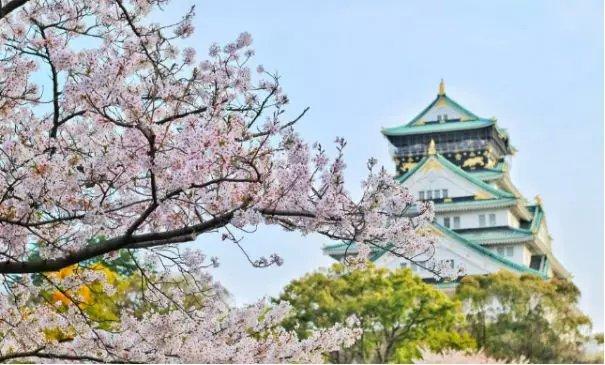 去日本看樱花的小伙伴,注意你们的漫游费哦~