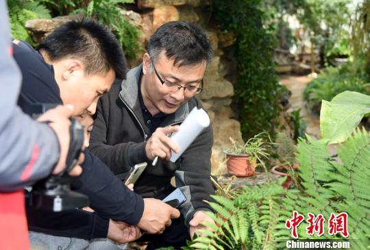北京最古老植物温室即将全新开放 首展4种猴面包树