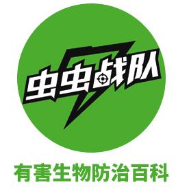 上海市房屋管理局关于做好2019年本市房屋白蚁防治工作的通知