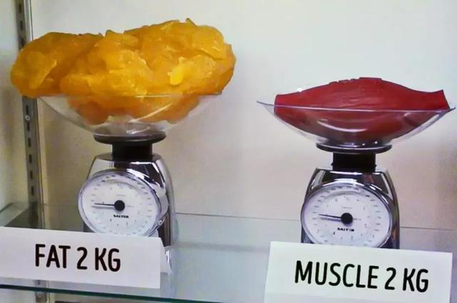 为什么运动后体重不降反升?