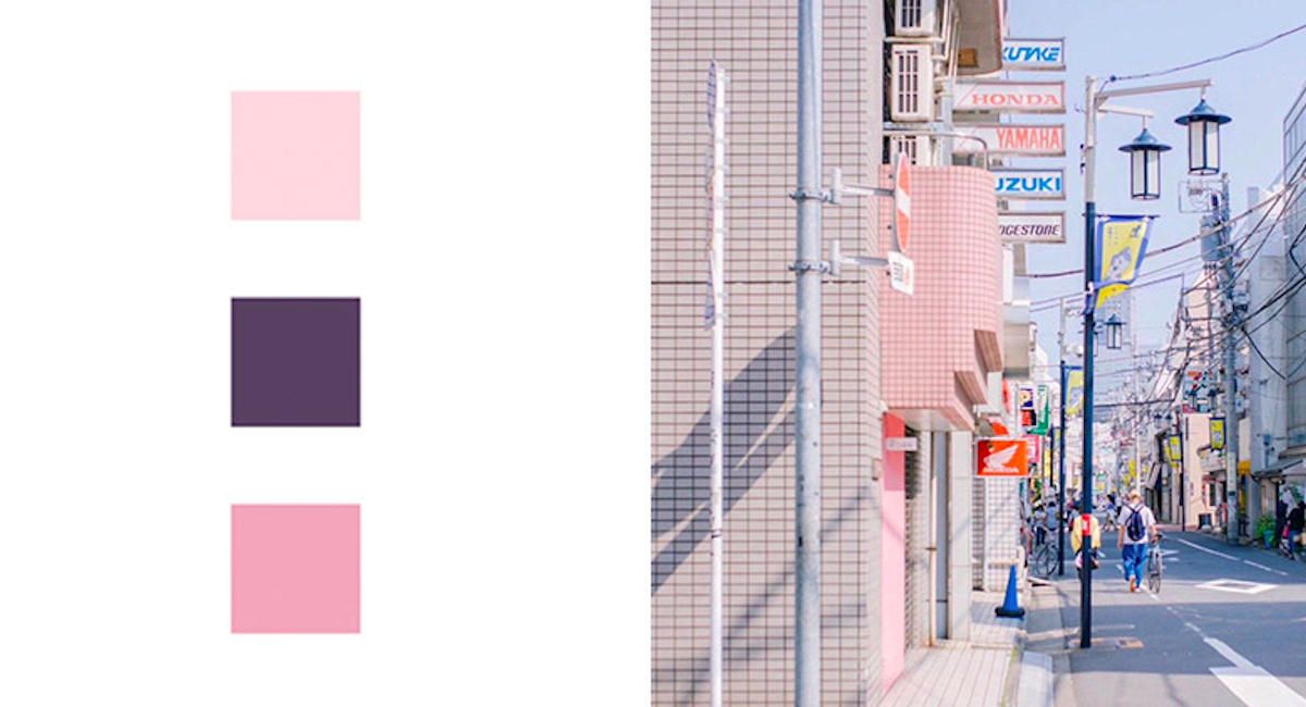 日本「令和」代表色公布,梅、堇、樱中选