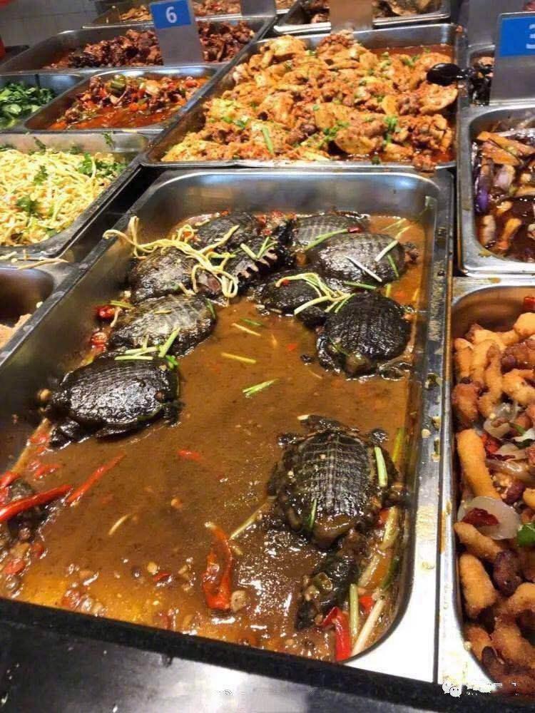 华东师范大学的硬核菜,鲁派赛螃蟹是哪个地方的菜,12元一只甲鱼,今年招生
