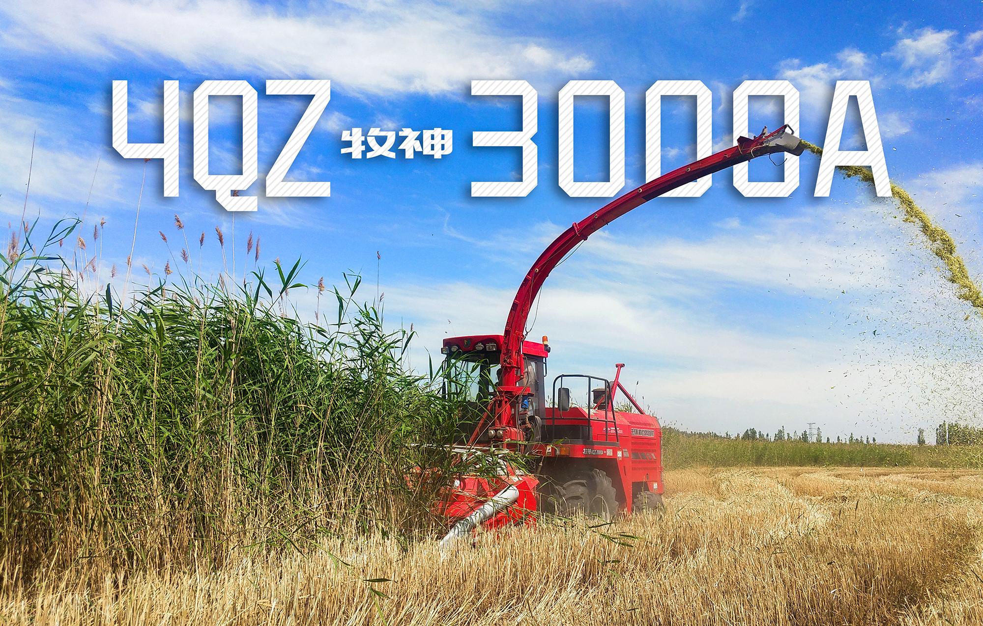 牧神4QZ-3000A换装矮割台,矮杆倒伏作物也能轻松收获!