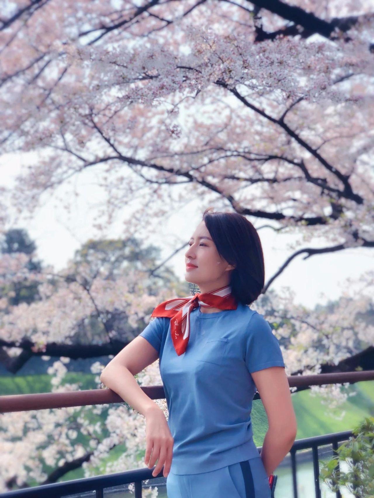 央视主持人张蕾40岁了,晒樱花照好漂亮,气质而优雅!